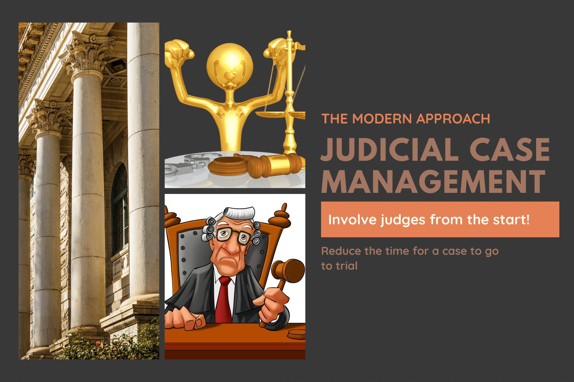 judicial case flow management
